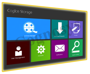 CogIce Storage